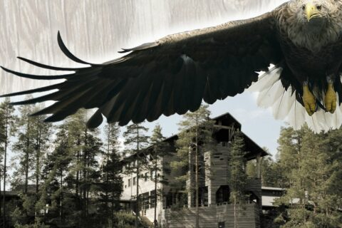 Kalevalan jalanjäljissä Wild Taiga